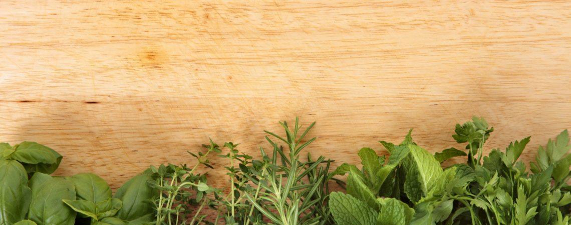 Rośliny, które pomogą wzmocnić odporność