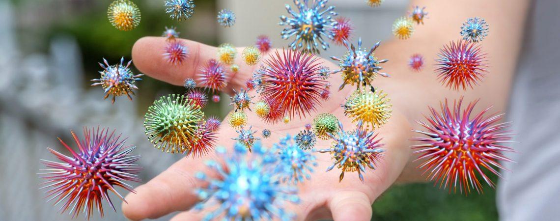 Wszystko, co musisz wiedzieć o bakteriach