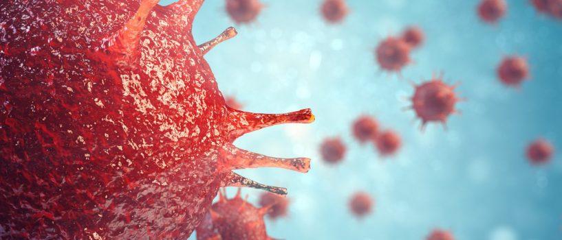 Wirusy bez tajemnic
